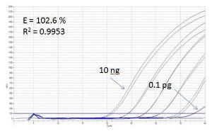 Meszaniny Master qPCR Luminaris Color Probe
