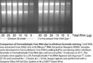 Zestaw żelowy RNA wolny od formaldehydu